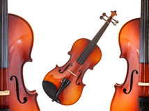 Halfs and full classical modern violins Royalty Free Stock Images