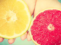 Halfs of yellow red grapefruit citrus fruit in human hands. Halfs of yellow and red grapefruit citrus fruit in female hands closeup. Woman dietician recommend royalty free stock image