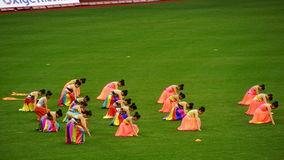 Halftime show at The 2015 Cricket All-Stars Match in New York. Halftime show at The 2015 Cricket All-Stars Exhibition Match at Citi Field in New York, on royalty free stock photo