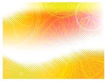 Halftone citrusvrucht Stock Afbeelding