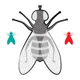 Halftone Fly Icon. Isolated on White Background. Pest Symbol in Engraving Style stock illustration