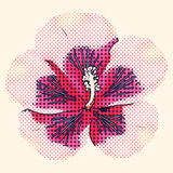 Halftone hibiscus Royalty Free Stock Images