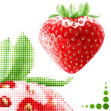 Halftone strawberry illustration Royalty Free Stock Photo