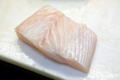 Halibut Stock Images