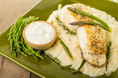 Halibut with asparagus risotto on green plate Royalty Free Stock Photos