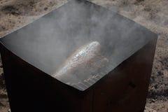 halibut dymił Zdjęcia Royalty Free