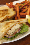 Halibut sandwich with sweet potato fries Royalty Free Stock Image