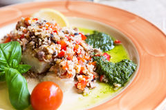 Halibut with vegetable garnish and couscous Stock Images