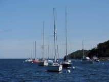 Halifax Harbour. Sailboats in Halifax Harbour, Nova Scotia, Canada Stock Image