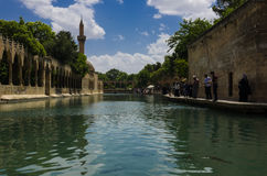 Halil-ur Rahman Mosque, helig sjö (fisk sjön), Urfa Royaltyfria Foton