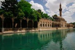 Halil-ur Rahman Mosque, helig sjö (fisk sjön), Urfa Fotografering för Bildbyråer