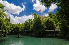 Halil-ur Rahman Mosque, helig sjö (fisk sjön), Urfa Royaltyfri Bild