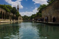 Halil-ur Rahman Mosque, lago santo (lago) fish, Urfa Fotografie Stock Libere da Diritti
