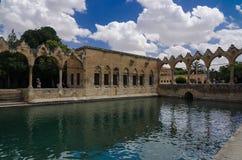 Halil-ur Rahman Mosque, lago santo (lago) fish, Urfa Immagine Stock