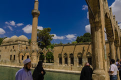 Halil-ur Rahman Mosque, lago santo (lago) fish, Urfa Fotografia Stock Libera da Diritti