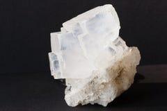 Halite mineral also rock solt on black background. Transparent white cubic halite mineral of sodium chloride crystals also rock salt on black background royalty free stock images