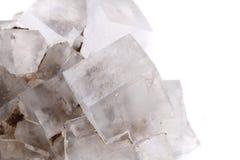 Halite salt cubes. Isolated on the white background stock photo