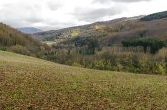 Halizna góra w jesieni Fotografia Royalty Free