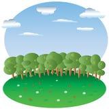 Halizna z kwiatami, las w tle, niebo z chmurami, Zdjęcia Royalty Free