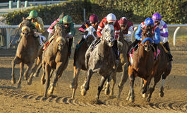 : Hall of Fame Jockey Mike Smith (blue cap with star)  Stock Image