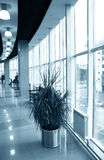 Hall with glass windows Royalty Free Stock Image