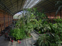 Hall of the old Atocha railway train station in Madrid with tropical plants Royalty Free Stock Image