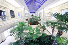 Hall with palms in Crocus City Mall Stock Photo