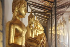 Hall von goldenem Buddahs Lizenzfreie Stockfotografie