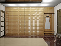 Hall with wardrobe Royalty Free Stock Images