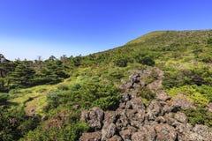 Hallasan berg, Jeju ö, Sydkorea Royaltyfria Bilder