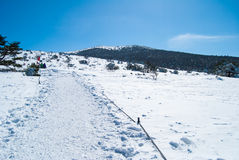 Hallasan-Berg in Jeju-Insel Korea im Winter Lizenzfreie Stockbilder