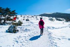 Hallasan berg på den Jeju ön Korea i vinter Fotografering för Bildbyråer