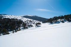 Hallasan mountain at Jeju island Korea in winter Stock Images
