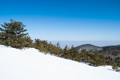 Hallasan mountain at Jeju island Korea in winter Royalty Free Stock Images