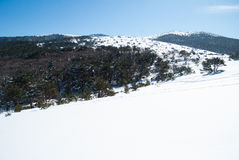 Hallasan mountain at Jeju island Korea in winter royalty free stock images