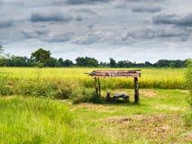 Halle auf dem Reisgebiet Lizenzfreie Stockfotos