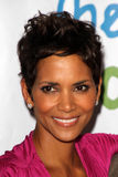 Halle Berry royaltyfria bilder