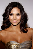 Halle Berry Royalty Free Stock Photos