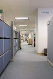 Halle in den Büroräumen Lizenzfreie Stockfotografie