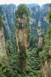 Hallelujaberg i Yuangjiajie område Arkivfoton