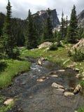 Hallet når en höjdpunkt stigning över liten ström i Rocky Mountain National Park Arkivbild