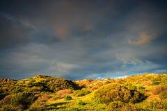 Hallett小海湾最小的风景,南澳大利亚 图库摄影
