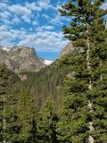 Hallett Peak in Rocky Mountain national park with a tree in the. Rugged Hallett Peak above treeline on a summer day Stock Photo