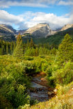 Hallett Peak and Storm Pass Trail on a summer Day. Lush summer green bushes and trees below Hallett peak in Rocky Mountain national park Royalty Free Stock Photo