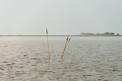 The Hallig Hooge in the wadden Sea Royalty Free Stock Images