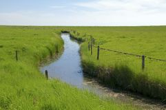 The Hallig Langeness in the Wadden Sea Royalty Free Stock Photos