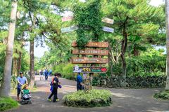 Hallim公园,其中一个10月5日的最普遍的旅游胜地, 201 免版税图库摄影
