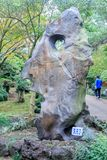 Hallim公园,其中一个10月5日的最普遍的旅游胜地, 201 库存图片