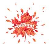 Hallo Autumn Watercolor Floral Design mit Ahornblatt Saisonfall-Fahne, Plakat, Druck, Verkauf, Promo-Schablone Herbst lizenzfreie abbildung