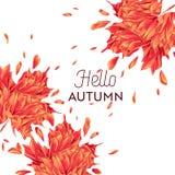 Hallo Autumn Watercolor Floral Design mit Ahornblatt Saisonfall-Fahne, Plakat, Druck, Verkauf, Promo-Schablone Herbst vektor abbildung
